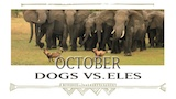 Oct - Dogs vs Eles